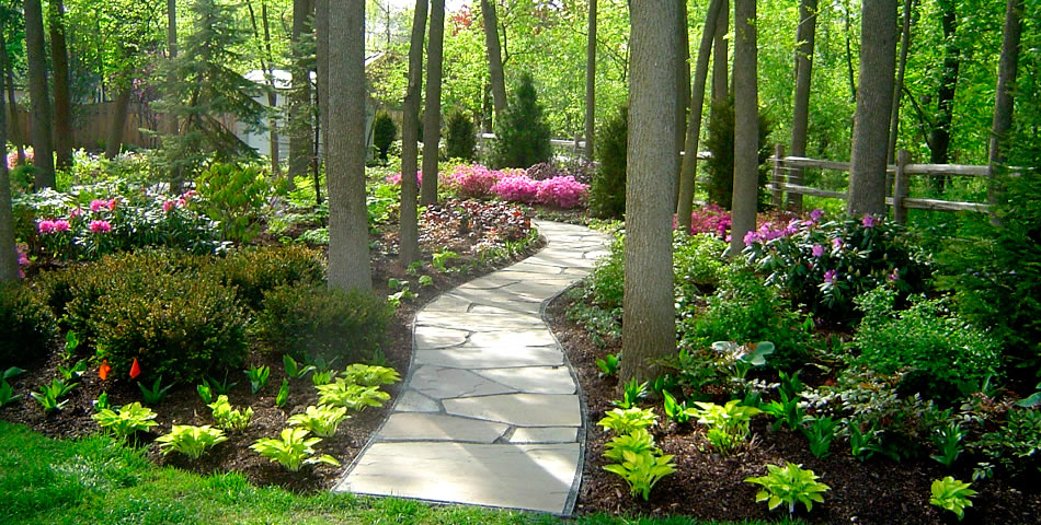 garden design with back garden ideas garden designs pictures shade garden landscape with small landscaping - Shade Garden Design Ideas